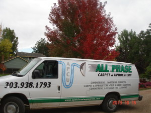 All Phase Carpet and Upholstery